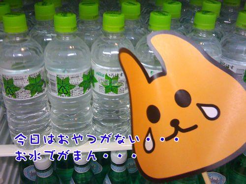 トフン・・(今日はおやつがない・・水しかない・・クスン・・と言っている)