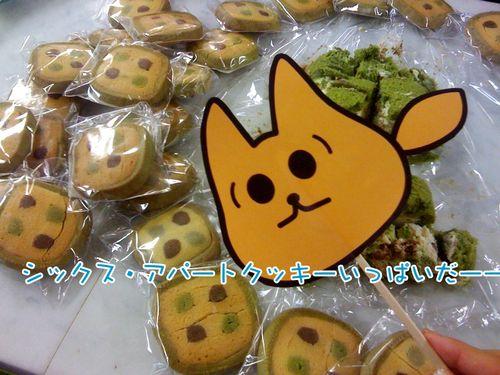 Sacookie
